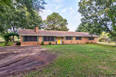 16601 County Road 498, Lindale, TX 75771 - #: 10099636