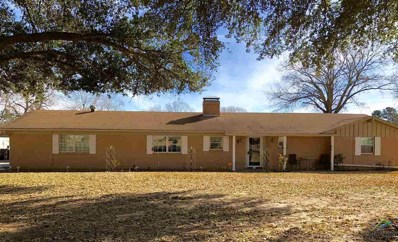 11155 Cr 2206 (Betty Dr.), Tyler, TX 75707 - #: 10099658