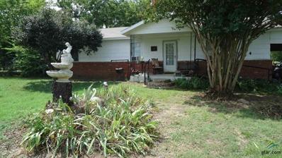 2459 Fm 1647, Winnsboro, TX 75494 - #: 10099739