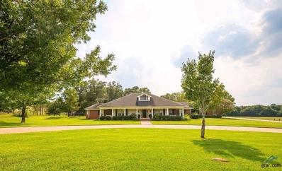 5666 County Road 317, Henderson, TX 75654 - #: 10099744