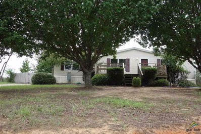 982 Cheyenne, Quitman, TX 75783 - #: 10099751