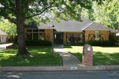 6603 Hollytree Circle, Tyler, TX 75703 - #: 10099769