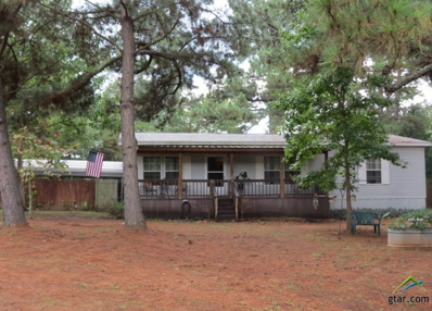 21831 Hwy 135, Troup, TX 75789 - #: 10099794