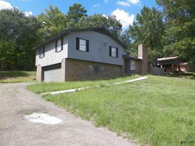 101 N Linda Lane, Overton, TX 75684 - #: 10099981