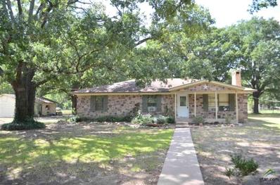 166 County Road 1858, Yantis, TX 75497 - #: 10100083