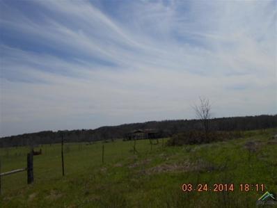 1735 Red Maple, Big Sandy, TX 75755 - #: 10100161