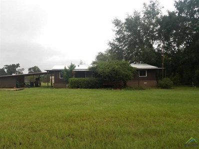 13352 Cr 1308, Whitehouse, TX 75791 - #: 10100309
