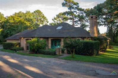 19726 Copperoaks, Tyler, TX 75703 - #: 10100341