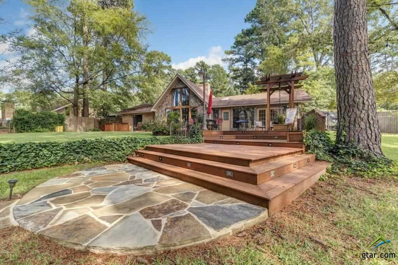 17233 Cardinal Lane, Troup, TX 75789 - #: 10100362