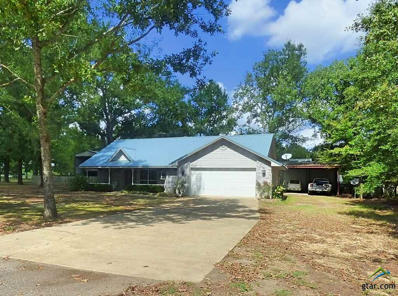 53 Cr 1044, Mt Pleasant, TX 75455 - #: 10100421
