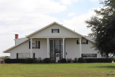 304 Cr 1323, Pittsburg, TX 75686 - #: 10100457