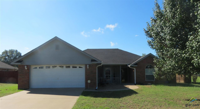 1307 Bonita, Quitman, TX 75783 - #: 10100503