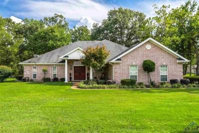 5026 Gregg Tex Rd., Longview, TX 75604 - #: 10100539