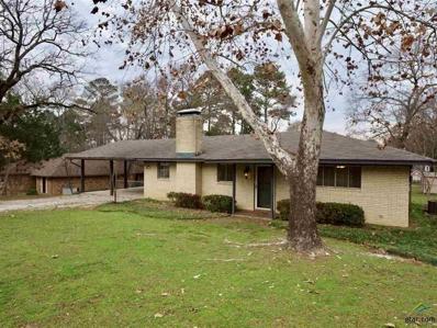 217 Grass Knoll, Hideaway, TX 75771 - #: 10100706