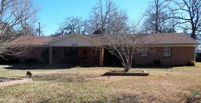 2715 S Cr 406, Henderson, TX 75654 - #: 10100758