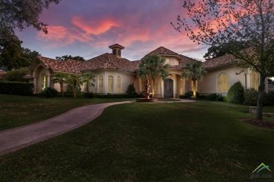 4356 Hogan Drive, Tyler, TX 75709 - #: 10100827