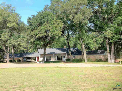 12510 S Hillcreek Rd, Whitehouse, TX 75791 - #: 10100849