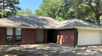 15019 Country Acres Dr., Lindale, TX 75771 - #: 10100864