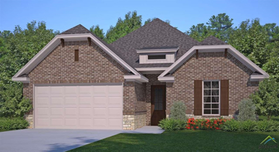 719 Cambridge Bend Circle, Tyler, TX 75703 - #: 10100895