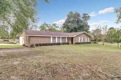 825 W Humble Rd., Overton, TX 75684 - #: 10100955
