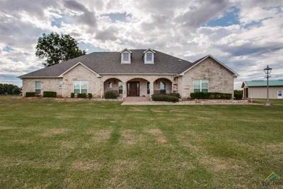 313 Vz County Road 2505, Canton, TX 75103 - #: 10101158