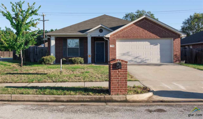 6950 Ranch Hill Dr, Flint, TX 75762 - #: 10101173