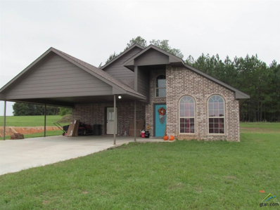 824 Jean Ray Ct., Winnsboro, TX 75494 - #: 10101205