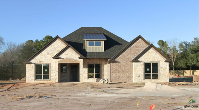 16557 Hailey Court, Tyler, TX 75703 - #: 10101242