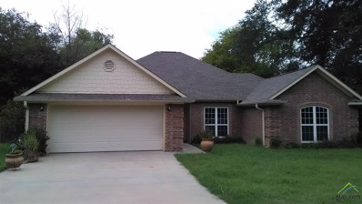 3215 Erma Street, Tyler, TX 75701 - #: 10101318