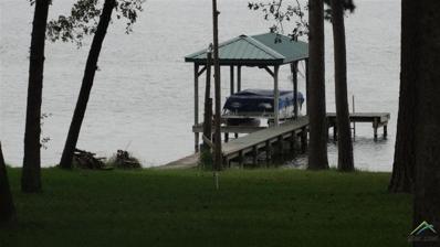 23001 Lakeside Dr, Flint, TX 75762 - #: 10101383