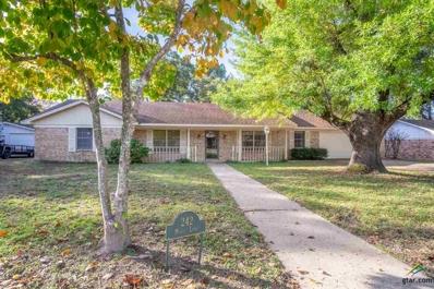 242 Molly Lane, Mineola, TX 75773 - #: 10101386