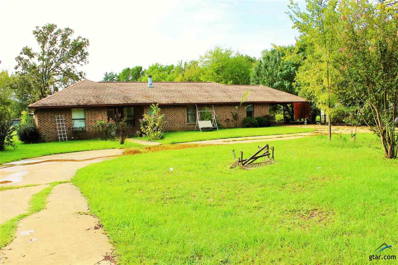 422 Cr 4030, Mt Pleasant, TX 75455 - #: 10101406
