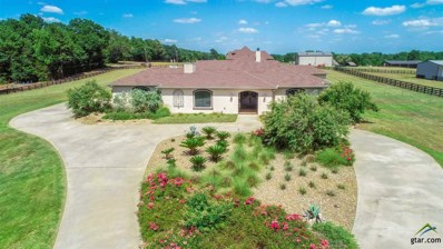 161 Wiley Page Rd, Longview, TX 75605 - #: 10101415