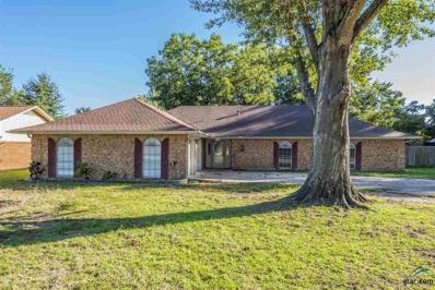 508 Sunnyside Drive, Chandler, TX 75758 - #: 10101459