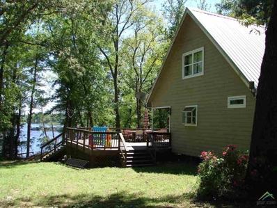 20561 W Grove Club Lake Rd, Whitehouse, TX 75791 - #: 10101469