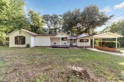 422 Whiteside Dr, Tyler, TX 75702 - #: 10101520