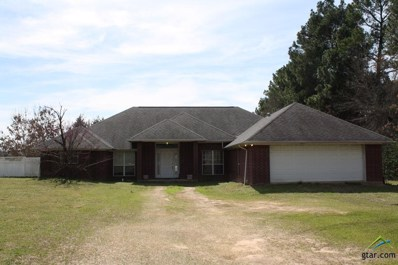 317 W Rutherford, Mt Vernon, TX 75457 - #: 10101557