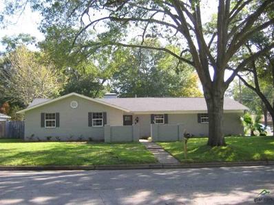 3712 Colgate, Tyler, TX 75701 - #: 10101630