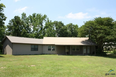 1917 SE Cr 3370, Winnsboro, TX 75494 - #: 10101699