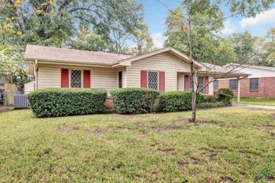 3811 Driftwood, Tyler, TX 75701 - #: 10101738