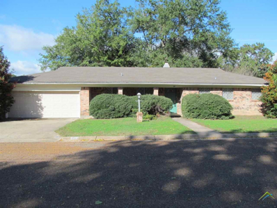 811 Mark Trail, Winnsboro, TX 75494 - #: 10101763