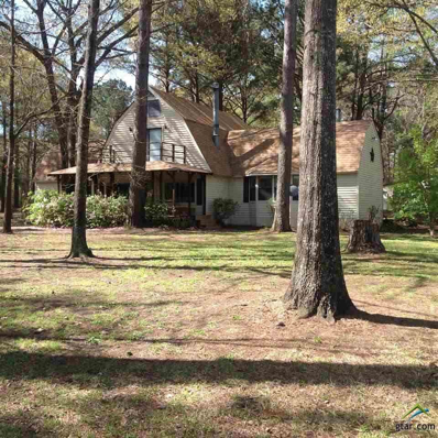 18032 N Lakeview, Troup, TX 75789 - #: 10101892