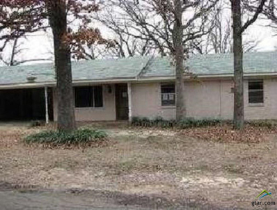 110 Vz County Road 4130, Canton, TX 75103 - #: 10101987