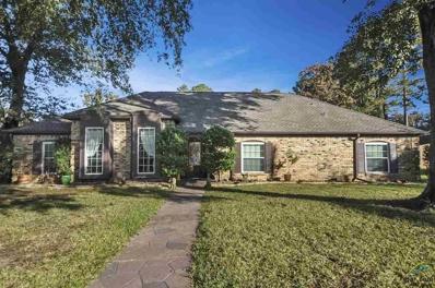 312 Hampton Hill Drive, Tyler, TX 75703 - #: 10101998
