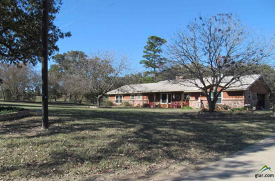 539 Cr 3160, Quitman, TX 75783 - #: 10102040