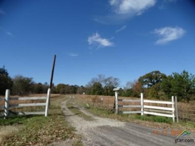 250 County Rd 2745, Mineola, TX 75773 - #: 10102053