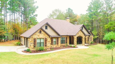540 Widgeon Lane, Gilmer, TX 75645 - #: 10102056