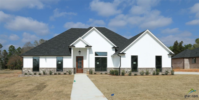 16541 Hailey Court, Tyler, TX 75703 - #: 10102125