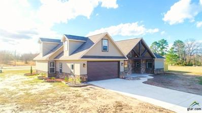 2900 Blue Heron, Mt Pleasant, TX 75455 - #: 10102225