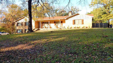 137 County Road 2430, Mineola, TX 75773 - #: 10102287